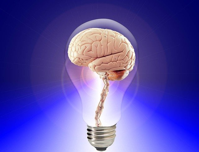 The brain in a lightbulb wisdom and ideas as one
